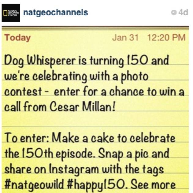 NatGeo launches a contest on Instagram with Dog Whisperer