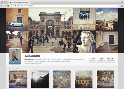 Los usuarios de Instagram ya tienen perfiles en la web. Muy parecidos a Facebook