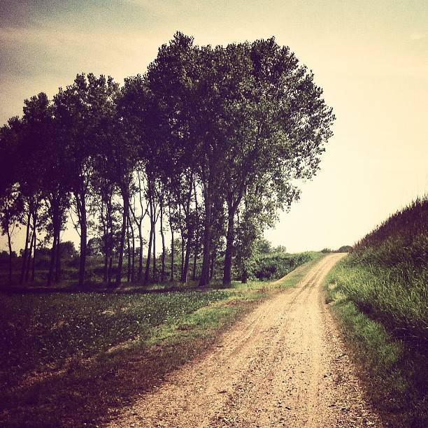 Emma_Barreca walking