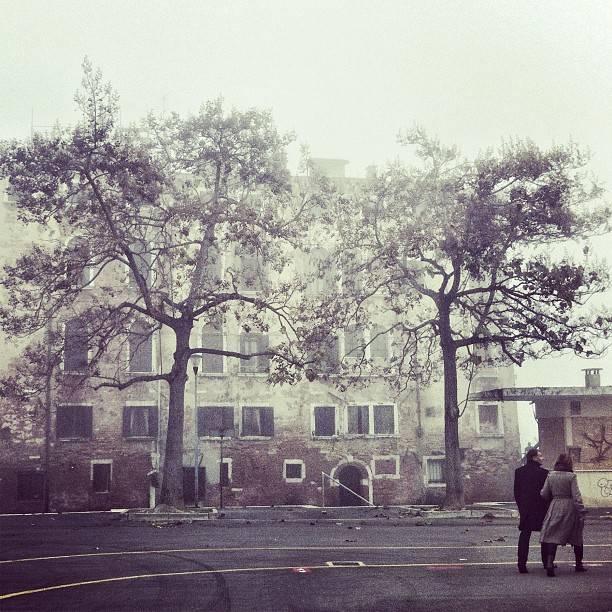 Emma Barreca Let us go in; the fog is rising