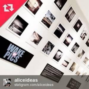 aliceideas winner wakeuppics