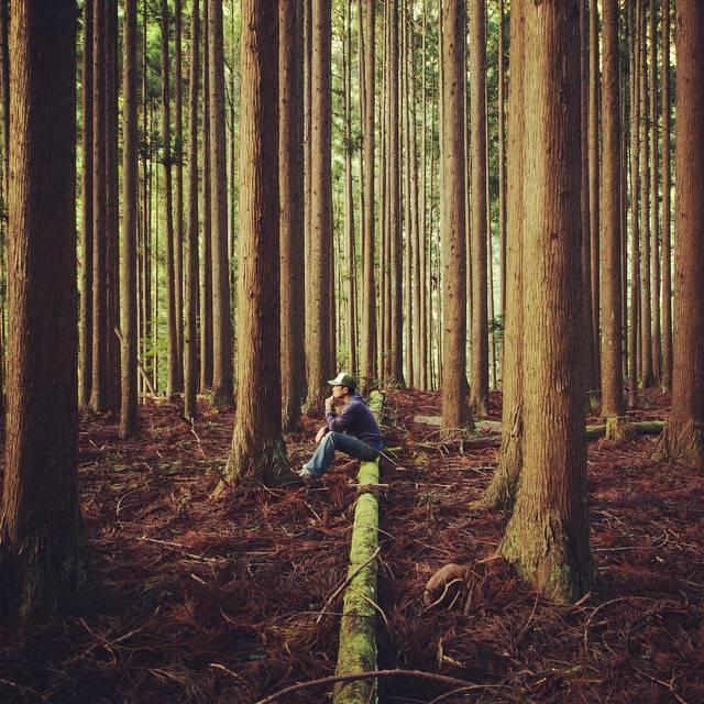 Focus On 1.93 Mitsu aka @mantaroq on Instagram: A real world of japanese dreams