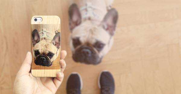Casetify-Custom-Case-Dog-600x313
