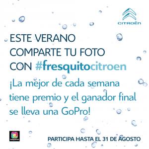 Citroen_Veranofresquito_IG