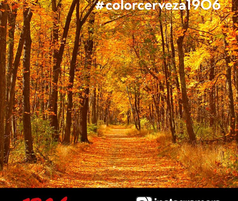 ¡Buscamos el #ColorCerveza1906! ¡Participa y gana una cámara de fotos Olympus E-PL8!