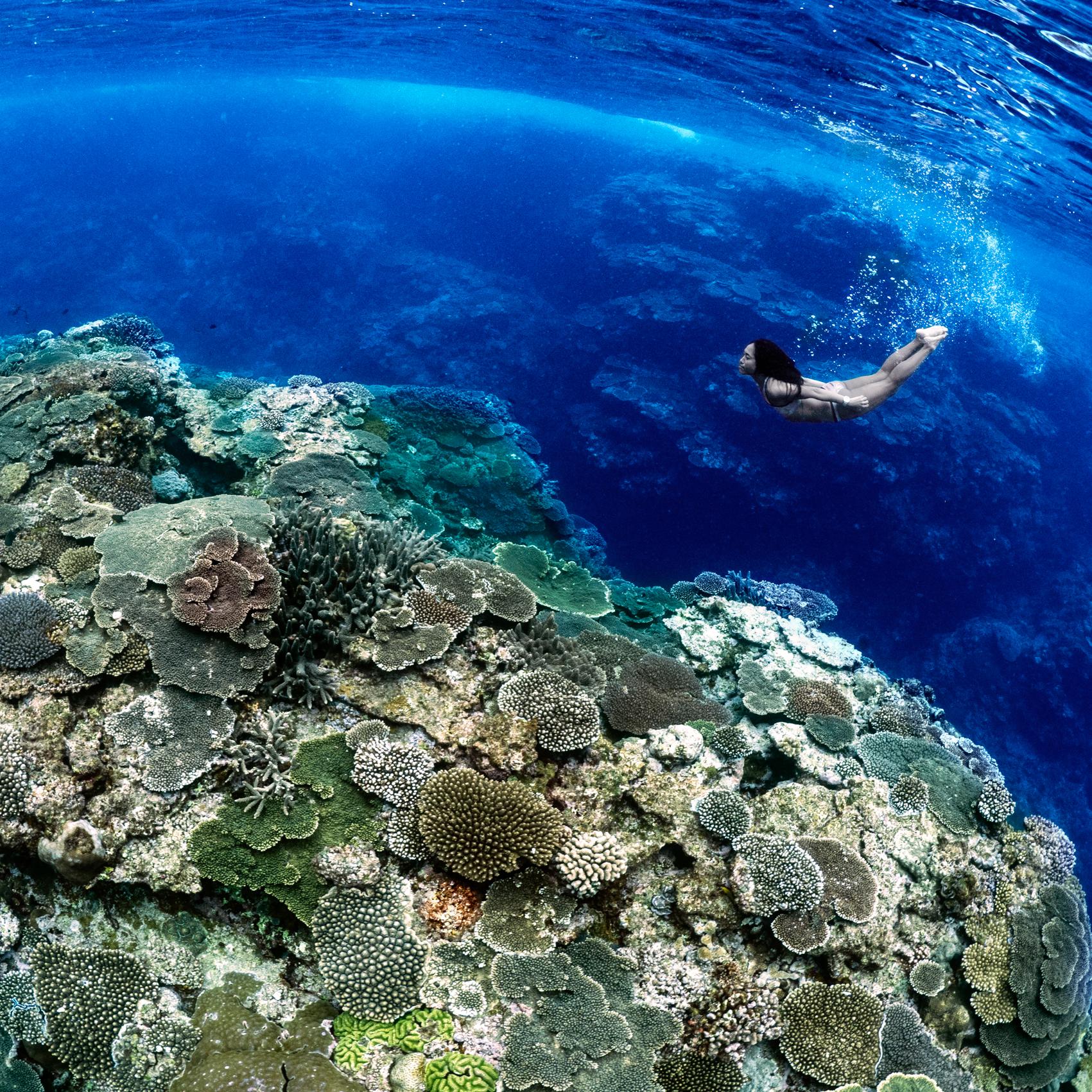 Ai Futaki and corals