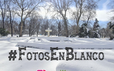 Nuevo concurso de Fotos En Blanco en Instagram organizado por Iberdrola